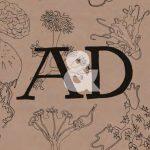 Arte y Diseño 1